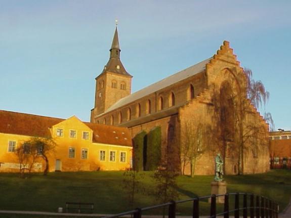 Odense. Foto: Lars Bjørnsten
