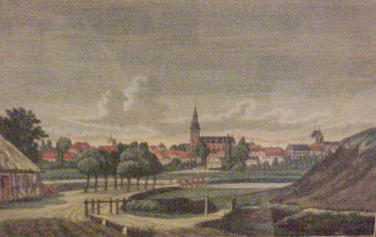 """Odense """"Byen set fra Nonnebakken"""""""