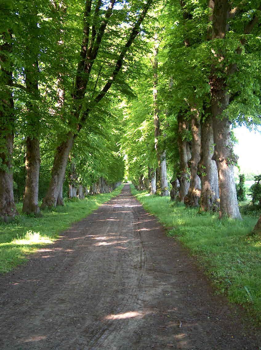 Alleen på Glorup Slot. Foto: Lars Bjørnsten 2003