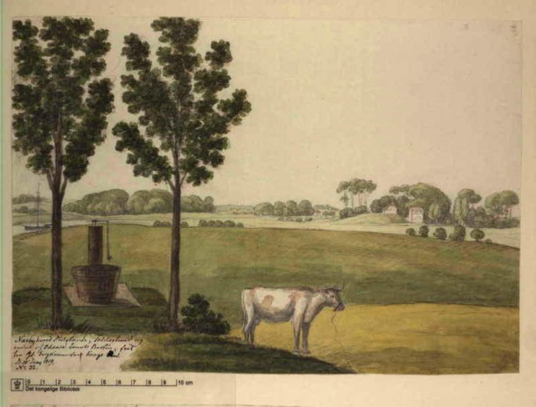 naesbyhovedslotsbanke-1819