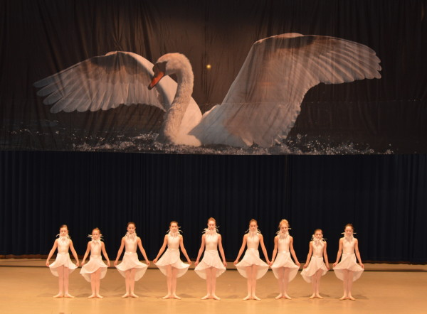 hca020413-ballet