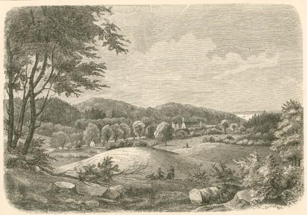 tirsbaek-vejle-fjord