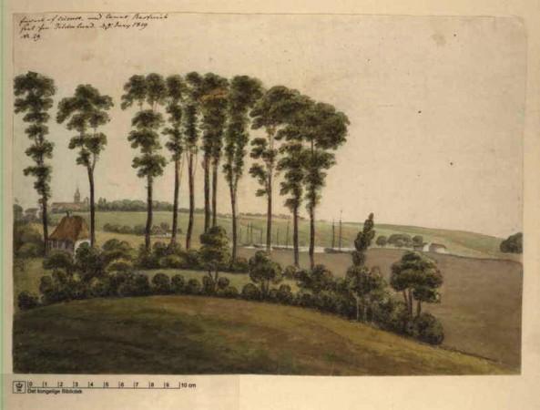 tolderlund-1819-rw